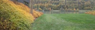 Wesenufer Herbst 2015
